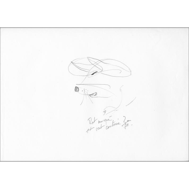Pencil-drawn drawing Rat musqué et vent contraire.